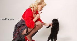 هل فكرت فى اقتناء حيوان اليف فى منزلك ؟